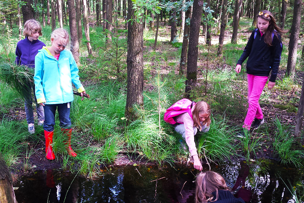 zomerkamp survivalkamp survivallen